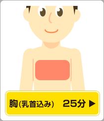 胸(乳首込み)